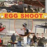 EggShootCard